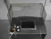 Les caissons à euthanasie pour pigeons - Prévention et protection des bâtiments