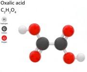 Acide Oxalique - CAS N° 6153-56-6 - Acide oxalique dihydraté 99% en poudre (CAS 6153-56-6)