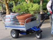 Chariot électrique à 3 roues