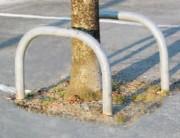 Arceaux de protection d'arbre - Dimensions (Lxh) mm : 600 x 500