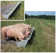 Abreuvoir pour porcs - Longueur extérieure : de 2.7 à 5.2 m