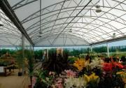 Abri plantes - Abri à haute résistance