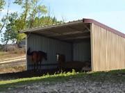 Abris pour chevaux - Dimensions : 6 x 6 m - Box métallique