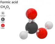 Acide Formique 80% - CAS N° 64-18-6 - Acide formique en solution à 80% (CAS <span>64-18-6