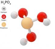 Acide Phosphorique 75% - CAS N° 7664-38-2 - Acide phosphorique à 75% en poids (CAS 7664-38-2)