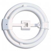 AMPOULE Ampoule Circline 65 watts culot G10Q - UNILUX