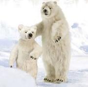 Animaux polaires pour décorations de noël   - Large gamme de peluche animal pour déco de noël