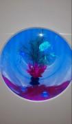 Aquarium en plexiglas - Sur mesure
