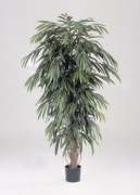 Arbre longifolia artificiel 180 cm