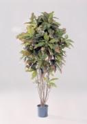 Arbre olivier artficiel