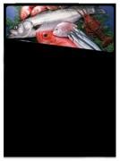 Ardoise murale pour poissonniers