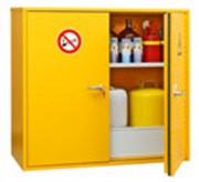 Armoire de sécurité multirisques inflammables - Capacité : 2 étagères de rétention