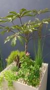 Bac à fleurs Arc-en-ciel - 4 pieds réglables en hauteur.