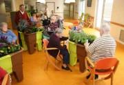 Bac carré jardin thérapeutique - Bac sur roulette utilisable en intérieur et extérieur