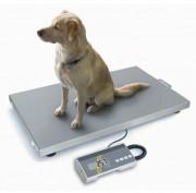 Balance de pesage vétérinaire