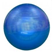 Ballon de fitness - Charge maximum : 120 kg