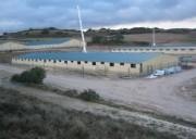 Bâtiment élevage bovin - Bâtiment sans poteaux