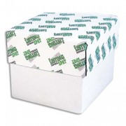 Boîte de 750 paravents listing 240x11 pouces 3 exemplaires blanc 56/53/57gr bande caroll détachable - Listing Express Spat