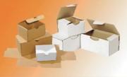 Boîte postale en carton