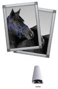 Cadre d'affichage démontable - Taille disponible : 32 mm - Tailles images : A2 - A3 - A4