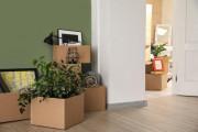 Caisse garde meuble bois
