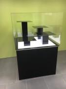 Capot plexiglas sur mesure - Muséographie, Capots, vitrines ou cloches de protection