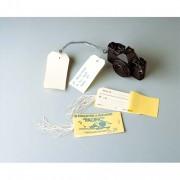 Carnet de 10 étiquettes bagage 120x60mm+ attache ficelle - Avery