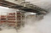 Chambres climatisées de mûrissage boucherie - Puissance de la chambre mûrissage (kw) : de 26 à 104