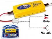 Chargeur de batterie au plomb automatique