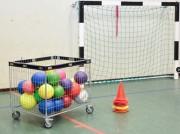 Chariot à ballons à maille - Capacité : 100 kg - Avec protection périphérique