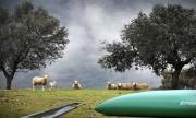 Citernes et réservoirs pour l'eau - N°1 des fabricants français