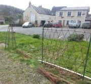 Clôture en osier vivant tressage losange - Plantation de clôtures osier en losanges et de haies