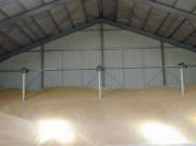 Colonnes de ventilation céréales - Ventilateurs centrifuges uniques pour céréales et grains