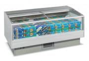 Congélateur vitré professionnel - Froid négatif ou Bi-température  - Dégivrage automatique