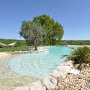 Construction piscine naturelle - Une piscine biologique et écologique
