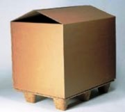 Container carton - Container