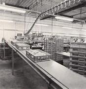 Convoyeur à bandes industriel - Sections profilées en inox - Largeur courroie de 400 à 1000 mm