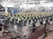 Convoyeurs de bouteilles de Champagne - Cadence:  12000 bouteilles par heure