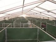 Couverture pour boxes - Abri pour boxes à chevaux