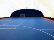 Dalles pour salles de sport - Dimensions : 250 x 250 x 11 mm - Livré en grandes dalles pré-emboîtées de 1 m² (16 dalles)