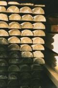 Demi rondin bois traité - Longueur (m) : De 2 à 4 ou Au ml