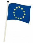 Drapeau pavillon d'Europe - 100 % polyester, 115 gr/m²