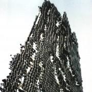 Element de mosaiculture pour mur de fleur professionnel - REF 30734400