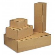EMBALLAGE Boîte postale carton 430x300x120mm - ANTALIS