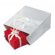 EMBALLAGE Paquet de 25 sacs pelliculés blanc avec poignées cordelières assorties 19 x 27 x 10 cm - PAS DE MARQUE