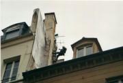 Entreprise de nettoyage de toitures pour professionnel - Enlèvement par application de produits démoussants spécifiques