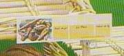 Étiquette effaçable pour présentoir de boulangerie - Dim. ext. (cm) : L 19 x ht 5,5