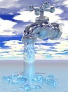 Filtration eau par micro organismes - purification de l'eau par l'utilisation d'EM