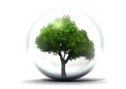 Formation aux Directives environnementales pour professionnel - Présentation et mise en pratique des règlementations : Directives RoHS, DEEE, EuP Marquage CE et REACH pour les utilisateurs aval.