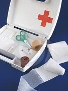 Formation gestes et soins d'urgence niveau débutant - Identifier une urgence médicale et savoir réagir